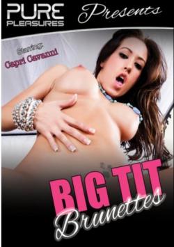 Big Tit Brunettes