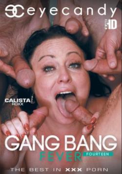 Gang Bang Fever 14