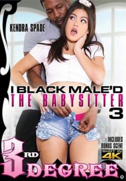 I Black Maled The Babysitter 3